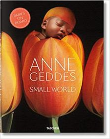 SMALL WORLD. BABIES ON BOARD | 9783836565561 | GEDDES,ANNE
